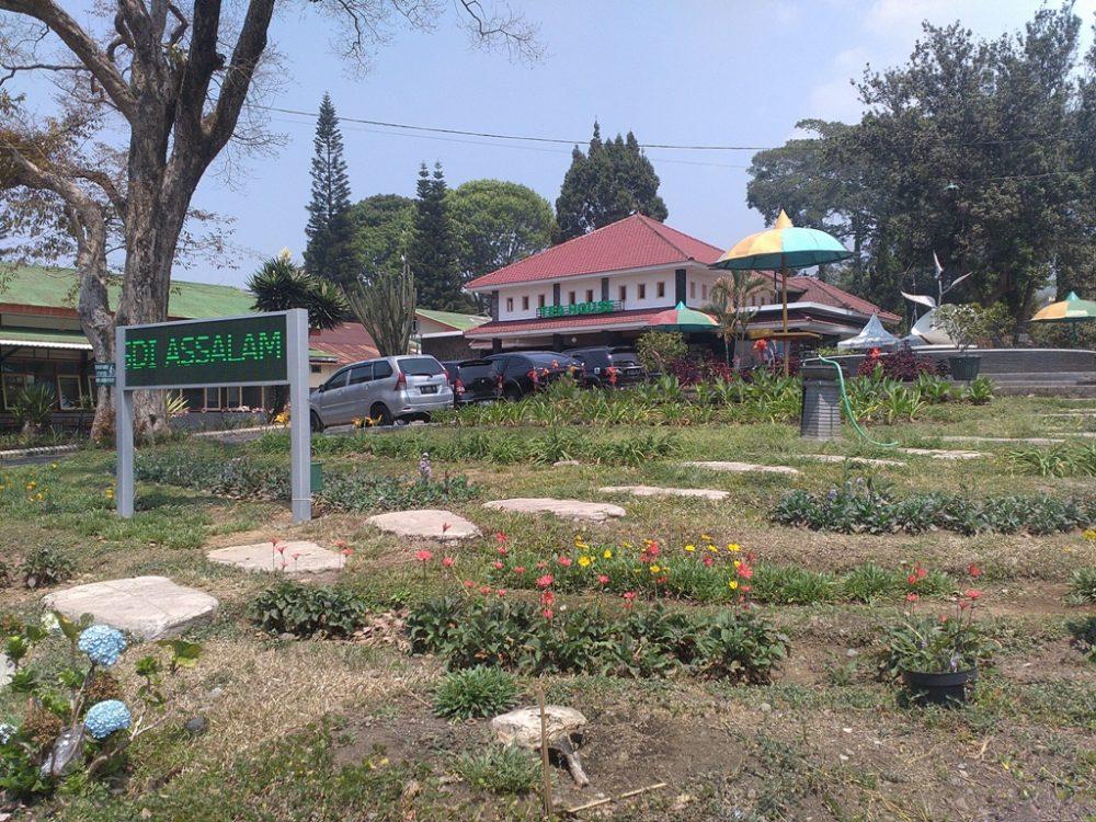 Kunjungan Edukasi  SDI As-Salam ke Kebun Teh Lawang